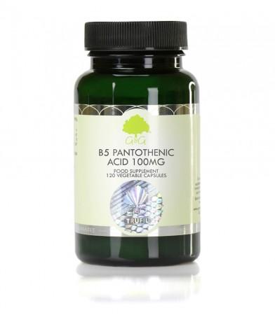Vitamin B5, Pantotenska kislina 100 mg, 120 kapsul